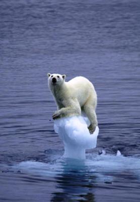 El responsable de la ONU para el pacto del clima tira la toalla