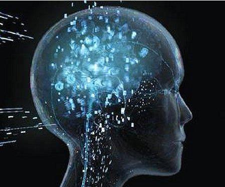 Descubren una bacteria que puede hacernos más inteligentes, según científicos.